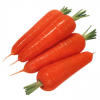 red carrot-China