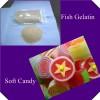 fish skin gelatin