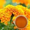 Marigold Oleoresin