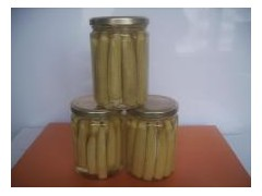 canned stringless green bean