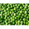 Sell Frozen Green Pea
