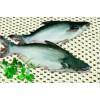 VIETNAM PANGASIUS / BASSA FISH