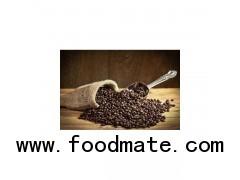 Wild Kopi Luwak Civet Coffee