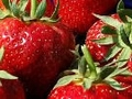 New health packed strawberry identified in Australia