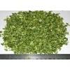 dehydrated celery stalks 2012