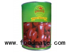 canned red kidney beans in tomato sauce