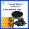 High Quality Pure Natural Propolis Extract