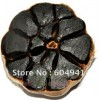 free shjpping black garlic