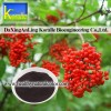 Elderberry Extract (5%-70% Anthocyanin)