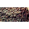 Sindoro Green Beans