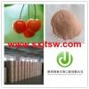 Acerola cherry extract VC17% 25%