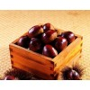 Raw Fresh Chinese Chestnut kernel Big Sale