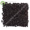 black barley malt for beer production