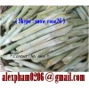 fresh sugar cane/ frozen sugarcane/ peeled sugarcane