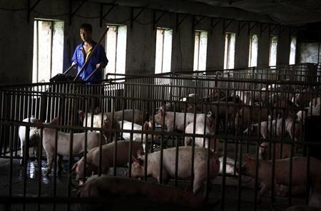 China's U.S. pork deal