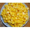 CANNED VEGETABLES-Young Corn