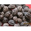 wild walnut(northeast China)