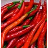 Dry Hot Peppers & Chili