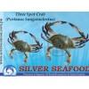 Three Spot Crab (Portunus Sanguinolentus)
