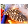 Frozen Dry Sea Cucumber