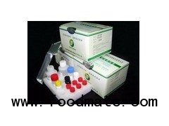Chloramphenicol(CAP) ELISA Test Kit