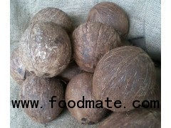 Coconuts from Nigaragua