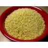 India millet