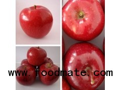 fresh red delicious huaniu apple