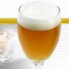 Siberian Beer. SibFoodExpo 2014