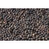 Black Pepper (300gl, 350gl, 400gl, 450gl, 500gl, 550gl, 580gl)