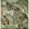 black tiger shrimp head of