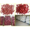 Dried Red Paprika Pods