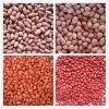 chinese peanuts, peanuts kernels, low price peanut