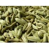 Grade A Fennel Seeds Available For Sale