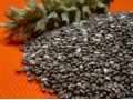 Chia seed gel holds great potential in food product development, study