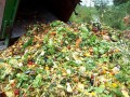 Food Waste Powers Sainsbury's Store