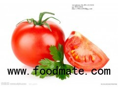 800g Fresh and Good Taste Tomato Paste in Canned