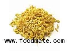 good bulk barley wholesaler