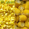 Frozen vegetables IQF sweet corn yellow corn