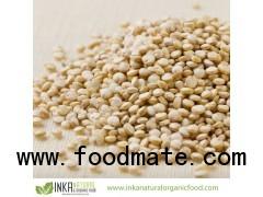 ORGANIC WHITE QUINOA Grain PREMIUM Certified