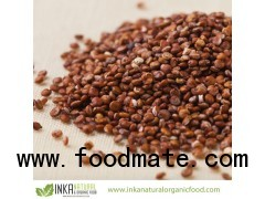 ORGANIC RED QUINOA Grain PREMIUM Certified