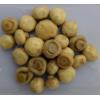 button mushroom in brine