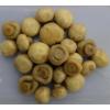 brine botton mushroom