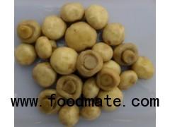 brine button  mushroom