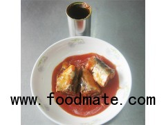 Canned sardines in tomao sauce