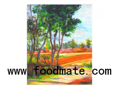 Eco-solvent Semi-Glossy Polyester Canvas 270gsm LP270M