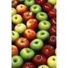 High Quality Fresh Golden and Red Delicious apple fruits