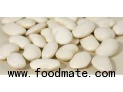 kidney shape beans