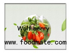 Goji berry,Dry goji fruits