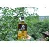 Chinese 250ML Green Szechuan Peppercorn Oil